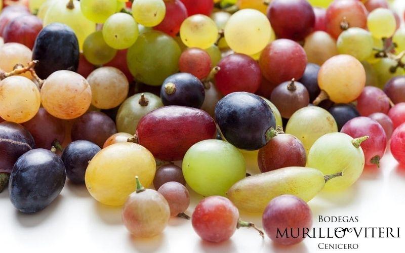 Aprovechamos de la uva
