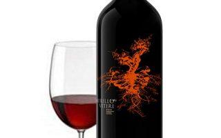 Comprar Vino Crianza Rioja