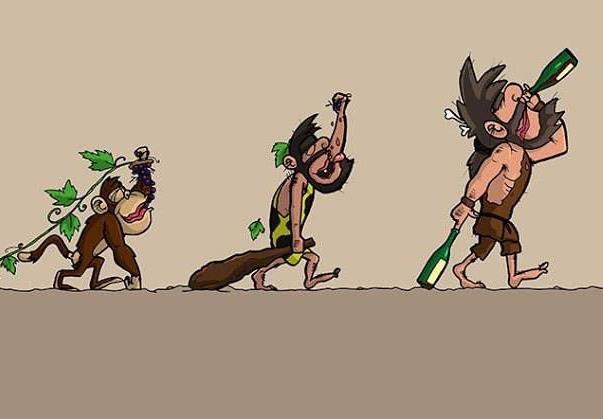 evolucion-vinicola