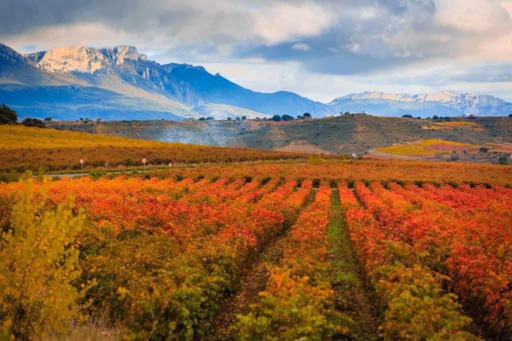 Las subzonas de la Denominación de Origen Calificada Rioja