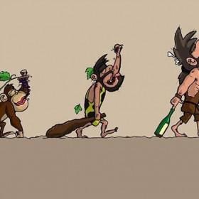 Evolucion Vinicola