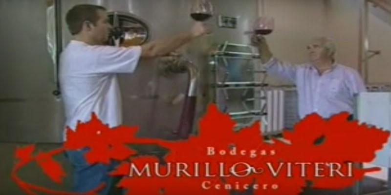 Anuncio Tv Murillo Viteri