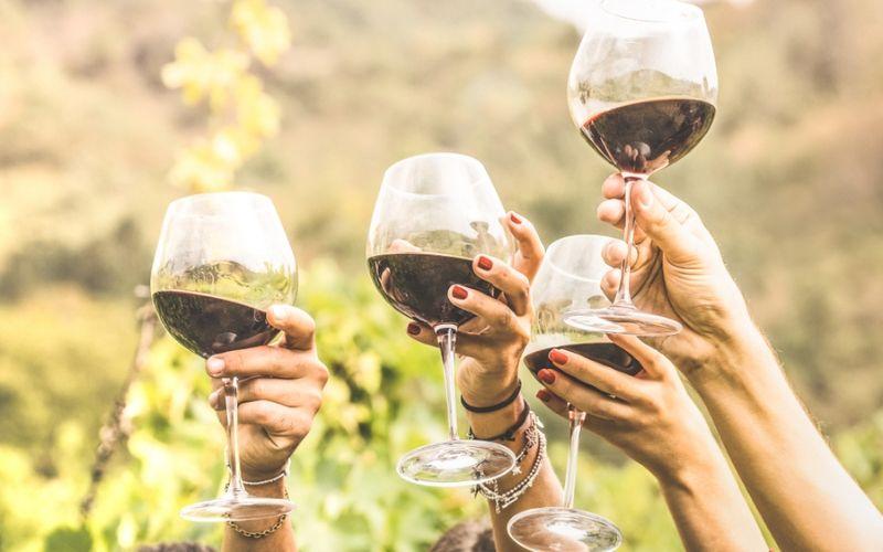 10 consejos para ser un auténtico winelover