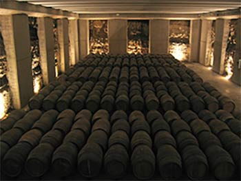 Visitar Bodega Rioja