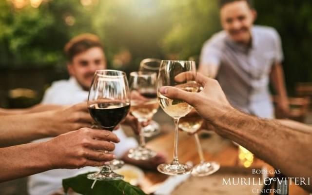 brindar con vino
