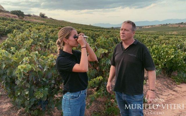 control-de-maduracion-en-las viñas